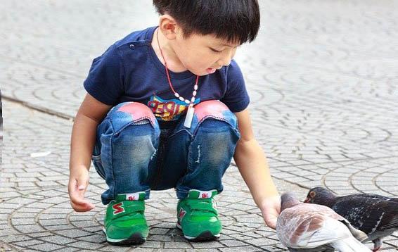 Un enfant avec un oiseau
